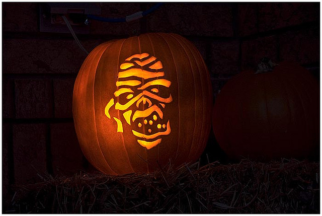 The Best Pumpkins Ready for Halloween – Part 1