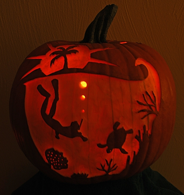 The Best Pumpkins Ready For Halloween Part 1 Wild Tide