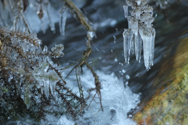 Cold River Icicle