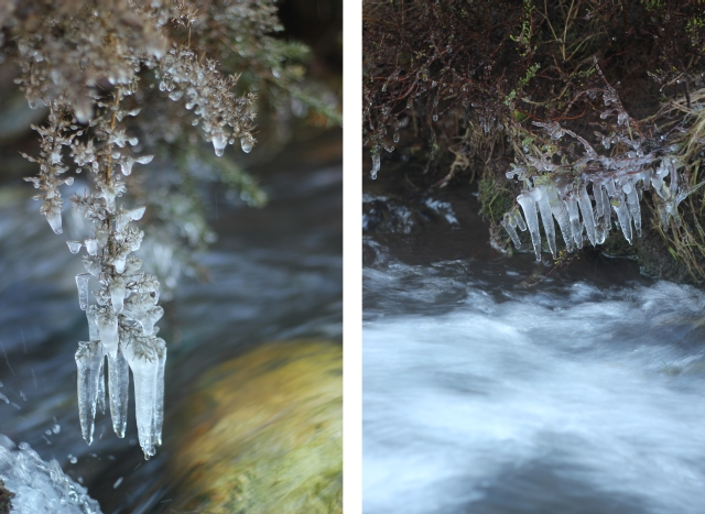 Cold River Photographs