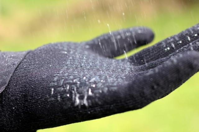 SealSkinz Gloves Waterproof