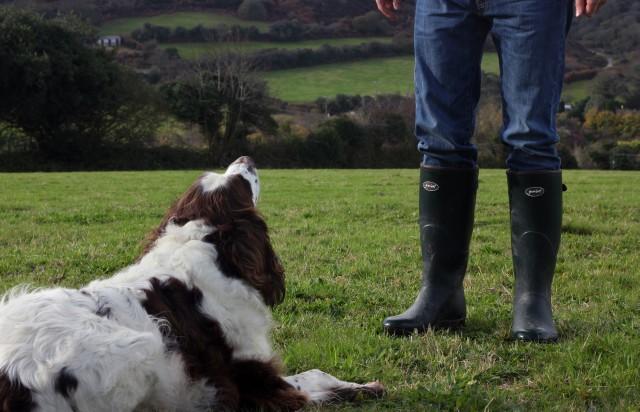 Gumleaf boots