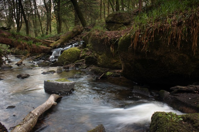 Kennal Vale River