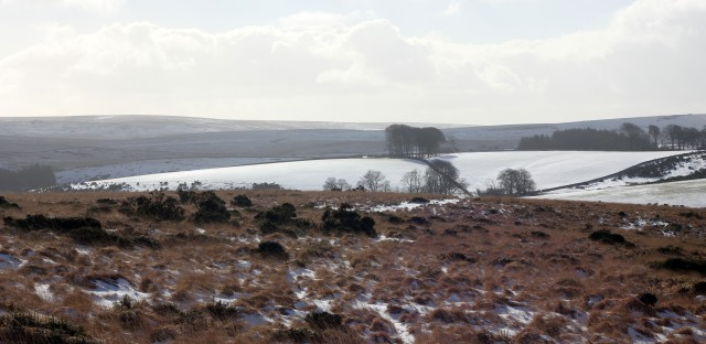 Dartmoor Tor Snow