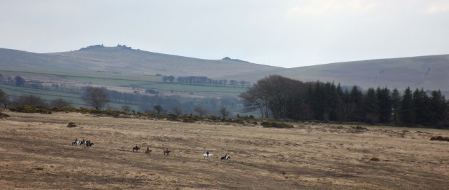 Dartmoor Horse Ride Tor