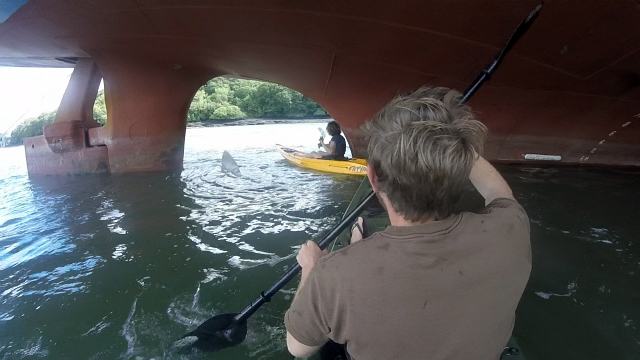Ship Propeller Kayak