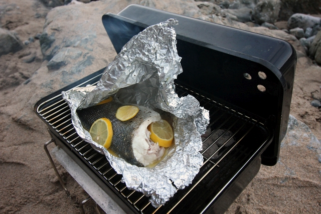 Bass Weber Go Anywhere Beach BBQ