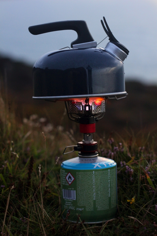 Coleman FyreStorm stove Flame