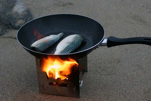 Petromax Hobo Stove BK1 Review with Freshly Caught Mackerel