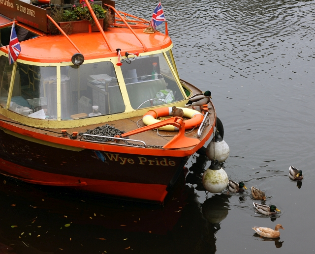 wye-pride-boat