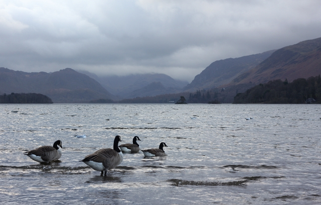 Keswick Derwentwater Lake View