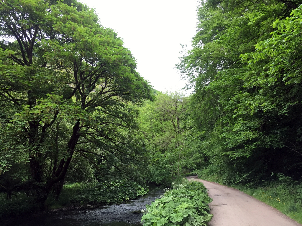 Monsal Trail Wyedale