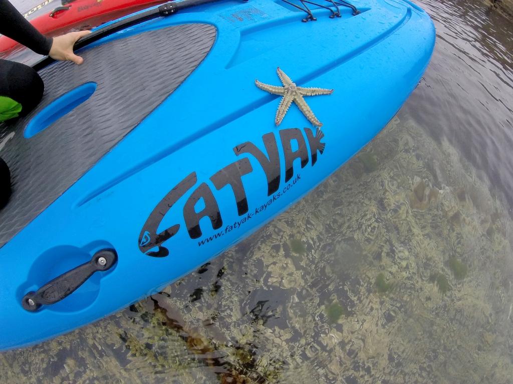 Fatyak Samos SUP Starfish