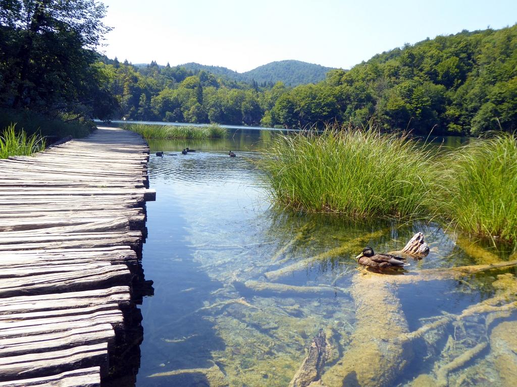 Plitvice Lakes Croatia Walkway