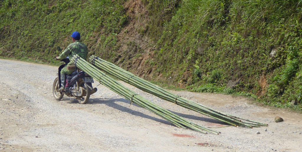 Sapa Mountains Bike Bamboo