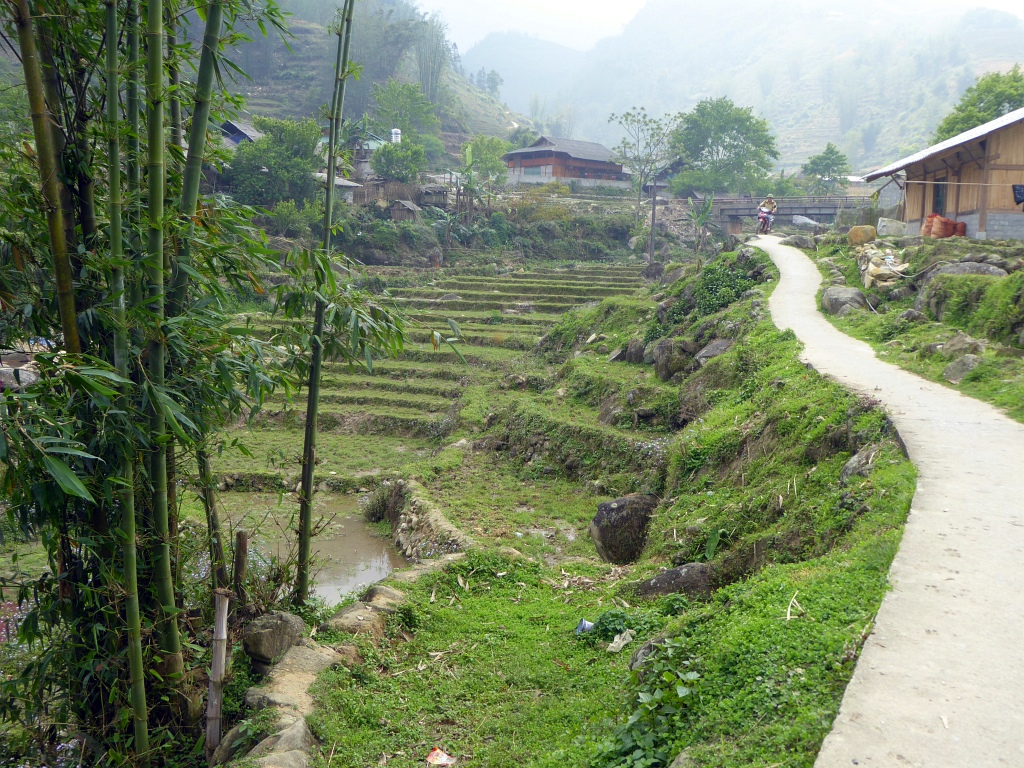 Sapa Mountains Rice Paddy Village