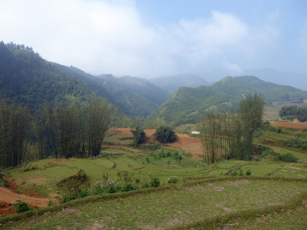 Sapa Mountains Rice