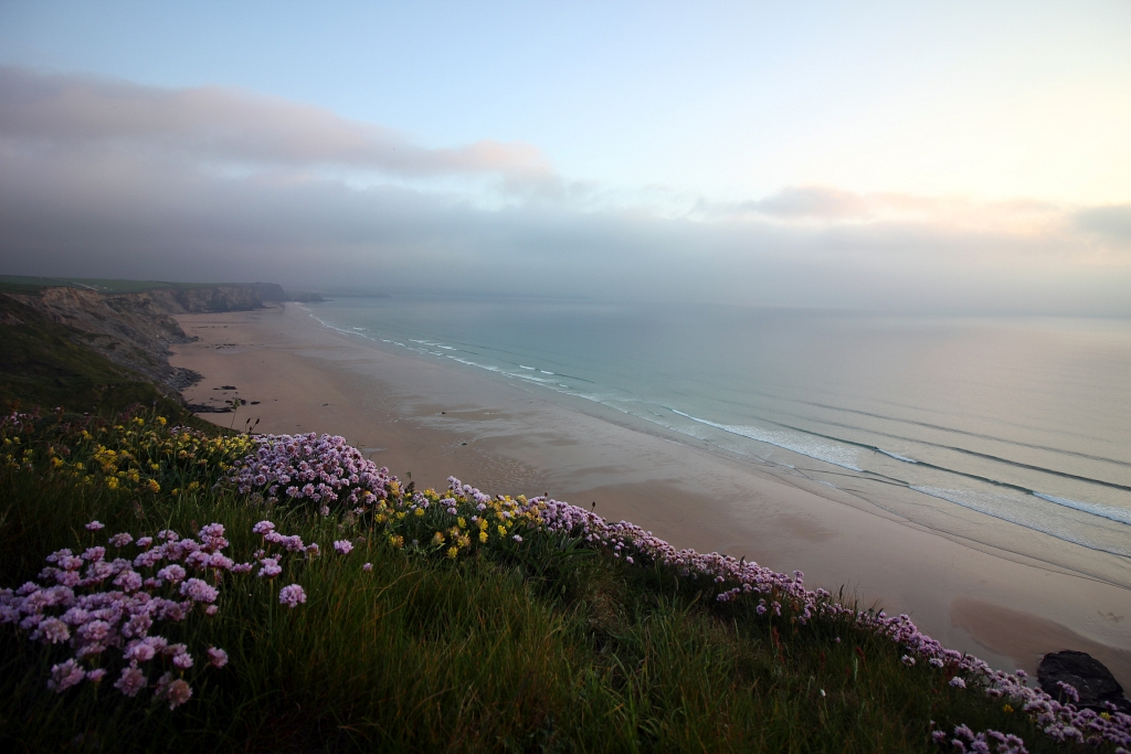 Watergate Bay Thrift Sunset Cornwall Cornish