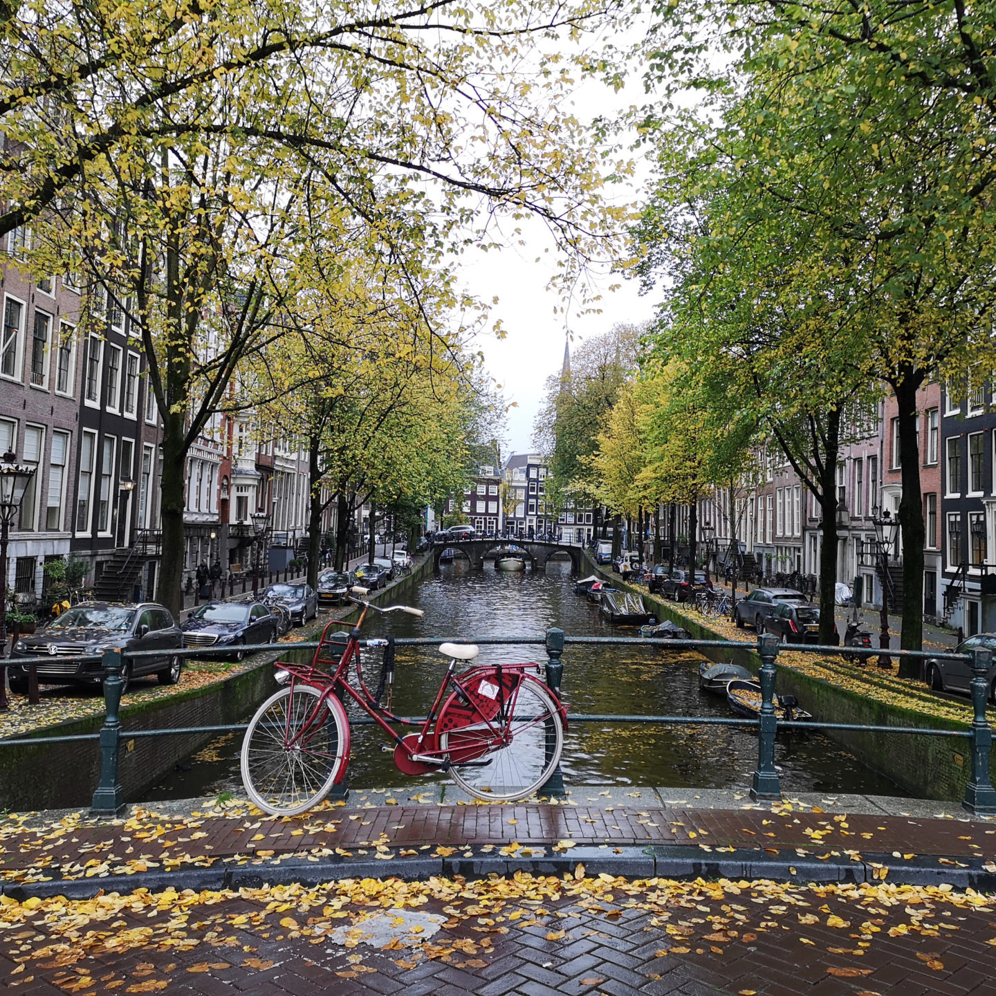 Cool Things You Must Do in Amsterdam, Netherlands